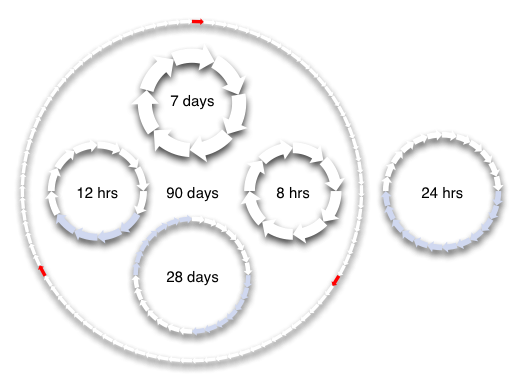 time cycle diagrams for 8, 12 and 24 hours, and for 7, 28 and 90 days